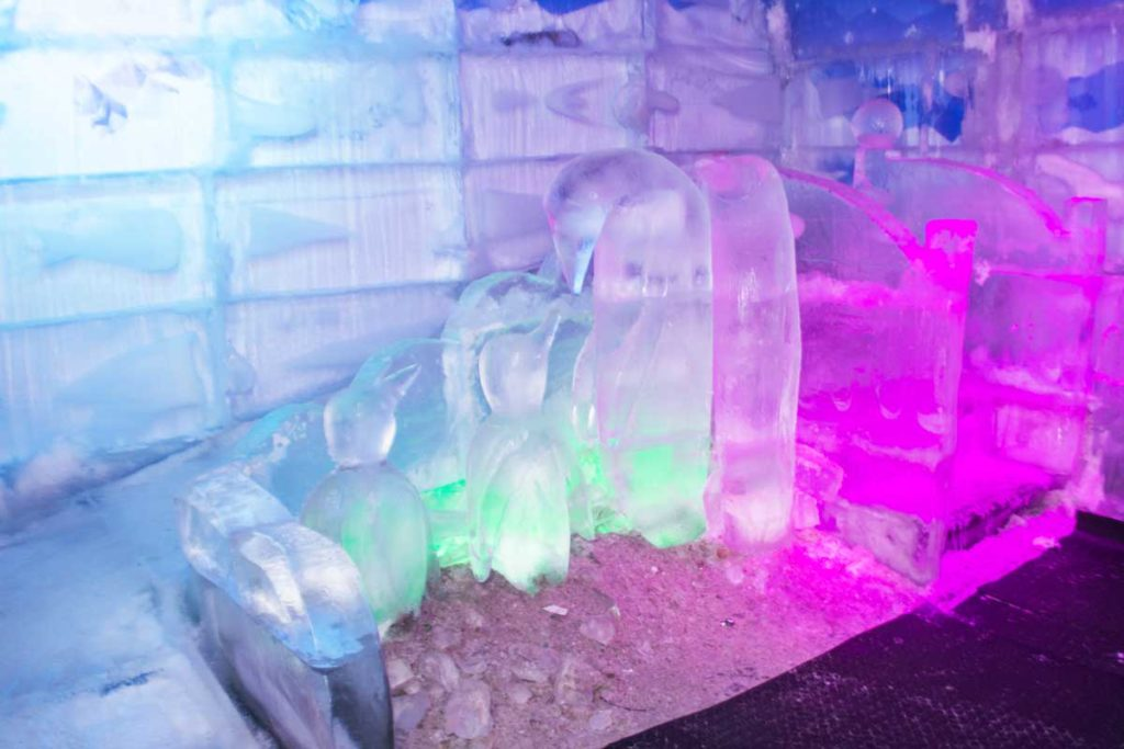 Esculturas de pinguins feitas com gelo e o escorregador de gelo.