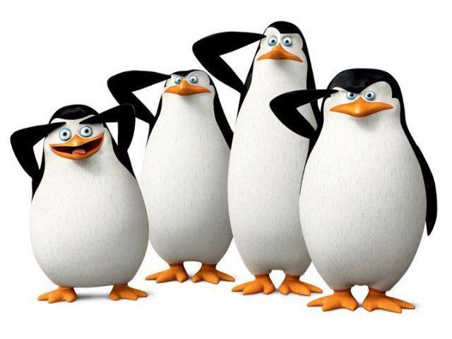Pinguins: tudo o que você não sabia sobre eles