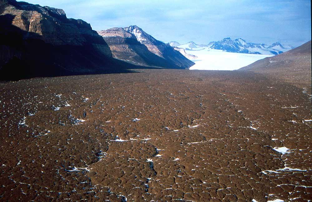 Um vale seco em primeiro plano e ao fundo vê-se a neve.